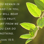 Weekly Wisdom: Apart from Him, We Can Do Nothing