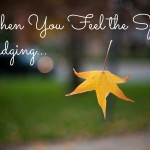 Weekly Wisdom: When You Feel the Spirit Nudging…